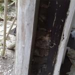 doors repairing before