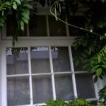 wooden window after restoration